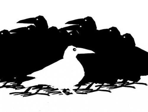 AktualityHľadajú sa príbehy Bielych vrán