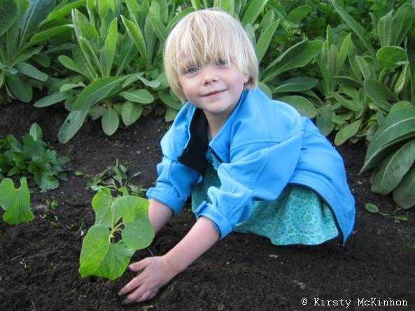 PonukyŽivel – cena za environmentálnu výchovu