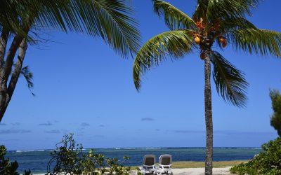 Právo na adekvátny prístrešok a primeranú výživu v Afrike-Maurícius