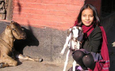 """Projekt """"mládež pre mládež"""" v Kátmándu, Nepál"""