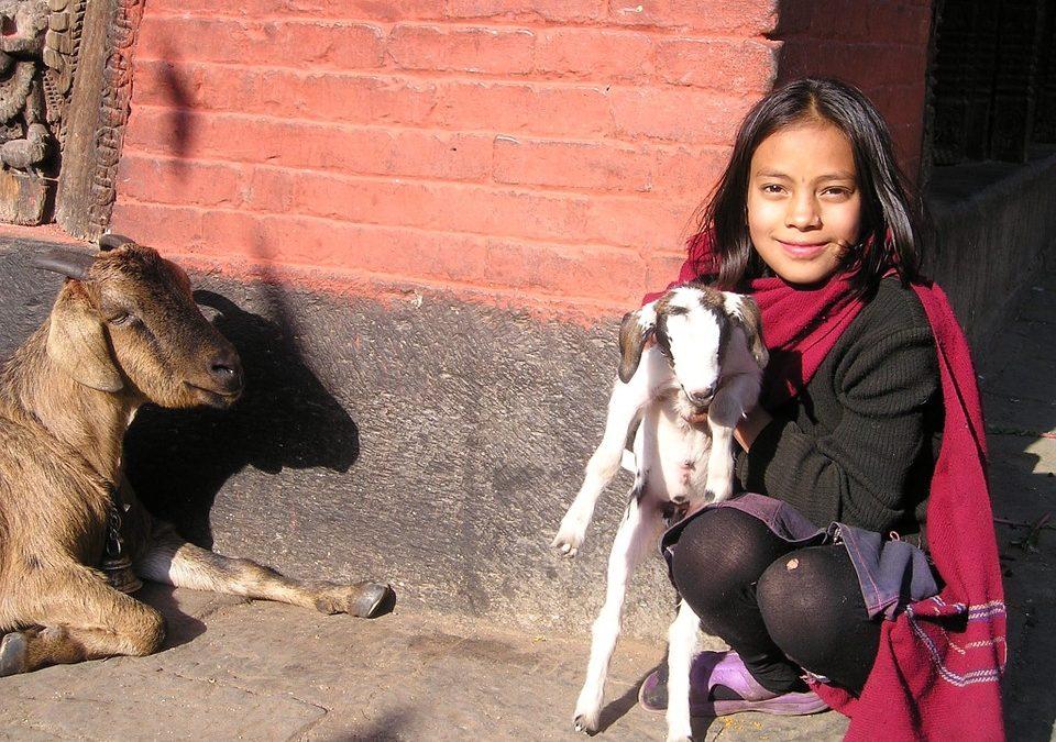 """PonukyProjekt """"mládež pre mládež"""" v Kátmándu, Nepál"""