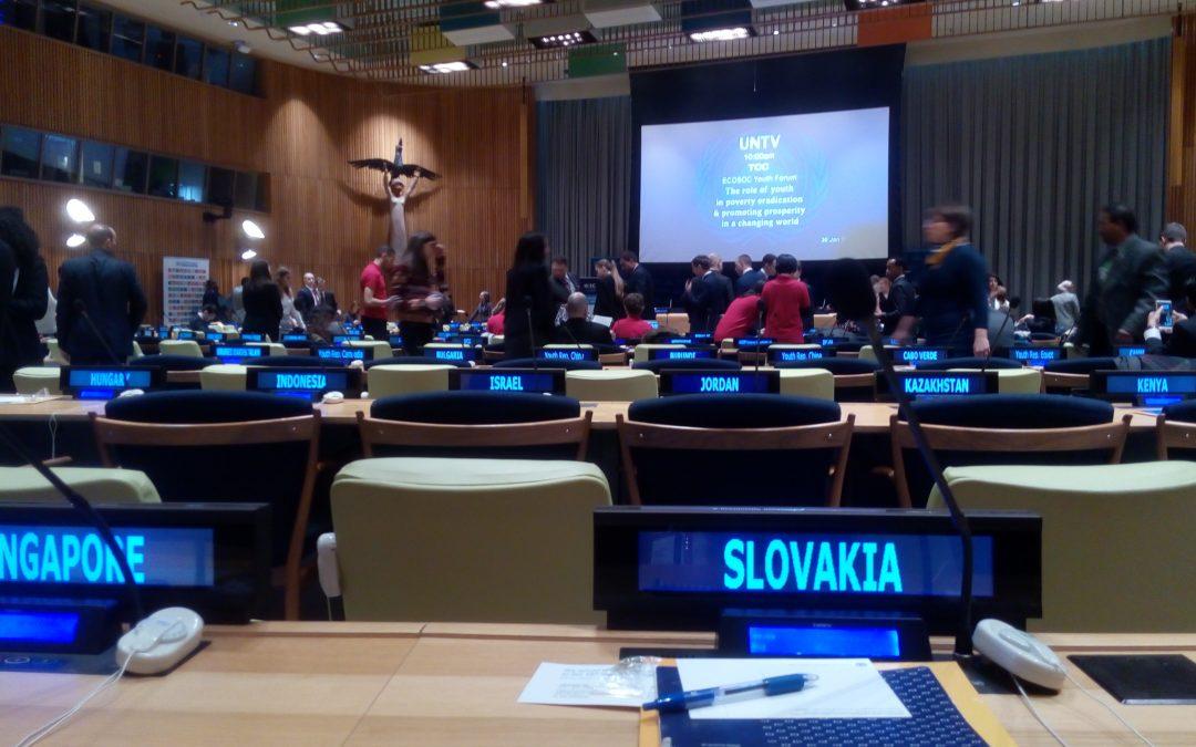 AktualityRada mládeže Slovenska na zasadnutí OSN