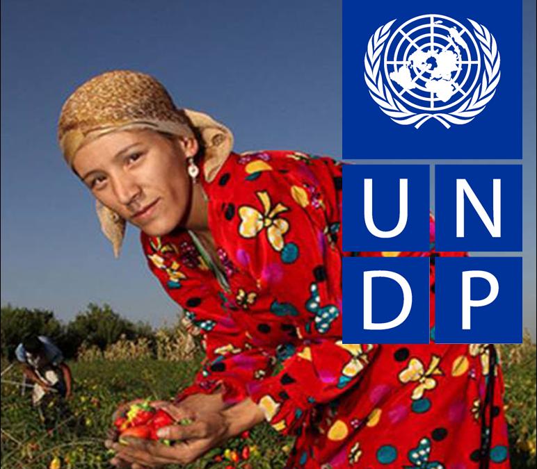 InformácieBuďte bližšie k UNDP!