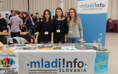 Brigáda v organizácii Mladiinfo Slovensko