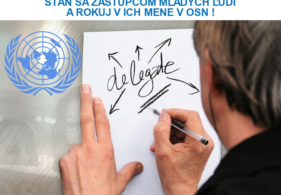 PonukyStaň sa mládežníckym delegátom Slovenska v OSN!